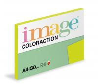 Coloraction A4/100ks  80g zelená reflexn